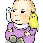 妊娠中や子育て中の方に。インコとの生活